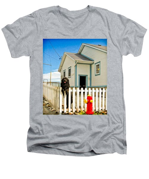 Newfoundland Dog In Newfoundland Men's V-Neck T-Shirt