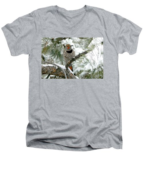 Northern Flicker On Snowy Pine Men's V-Neck T-Shirt