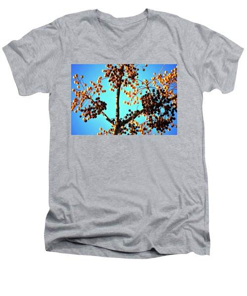 Men's V-Neck T-Shirt featuring the photograph Nuts And Berries by Matt Harang