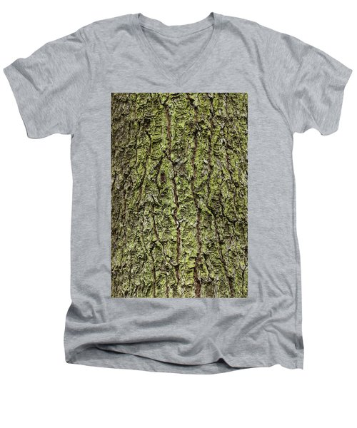 Oak With Lichen Men's V-Neck T-Shirt