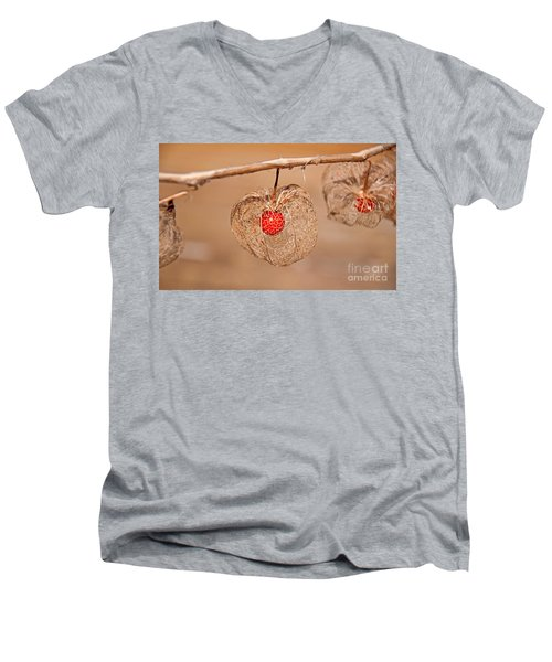 Old Chinese Lantern Pod Art Prints Men's V-Neck T-Shirt