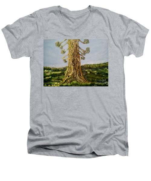 Old Tree In Spring Light Men's V-Neck T-Shirt