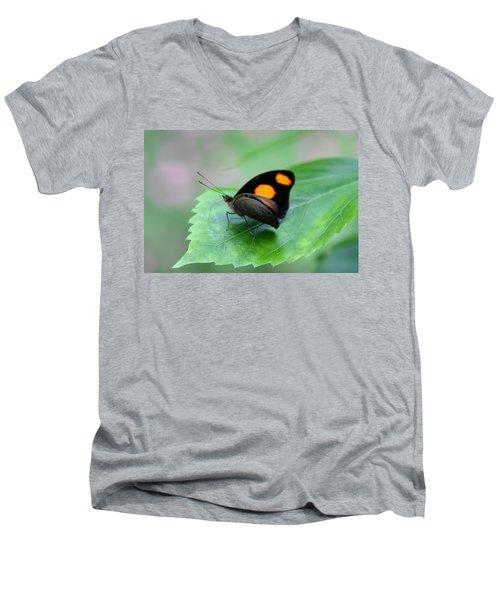 On The Leaf Men's V-Neck T-Shirt