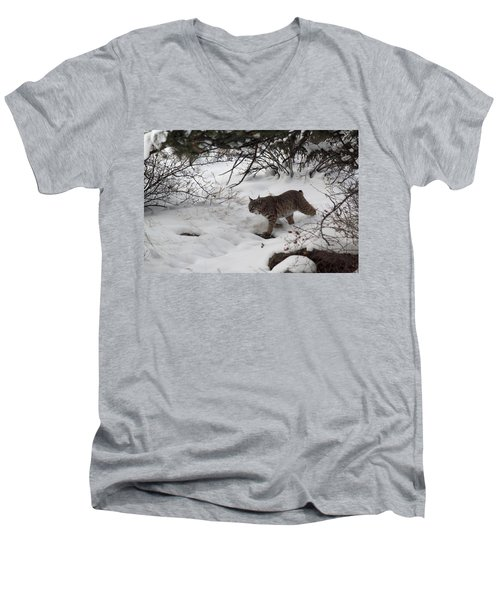 Men's V-Neck T-Shirt featuring the photograph On The Prowl by Shane Bechler