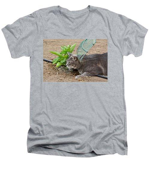 One Happy Cat Men's V-Neck T-Shirt