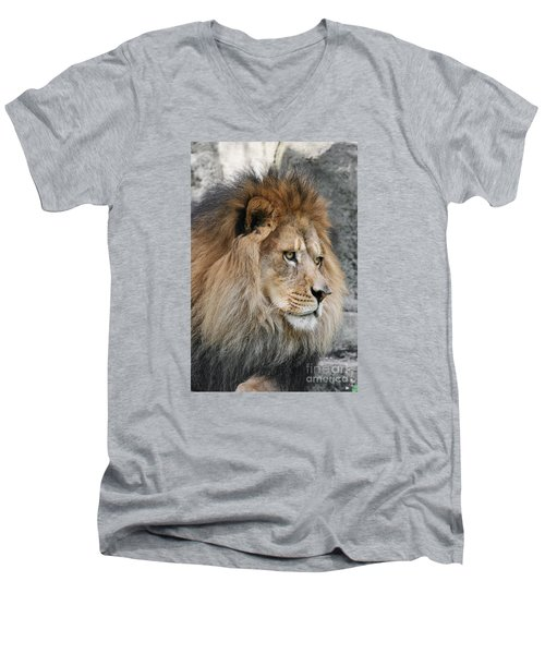 Men's V-Neck T-Shirt featuring the photograph Onyo #13 by Judy Whitton