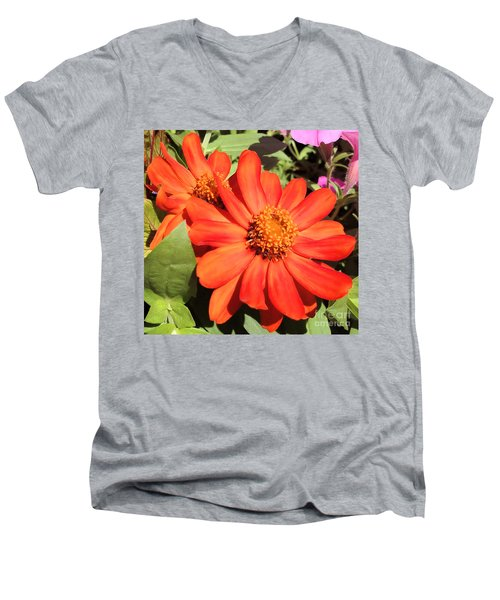Orange Daisy In Summer Men's V-Neck T-Shirt