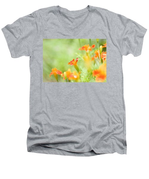 Orange Meadow Men's V-Neck T-Shirt