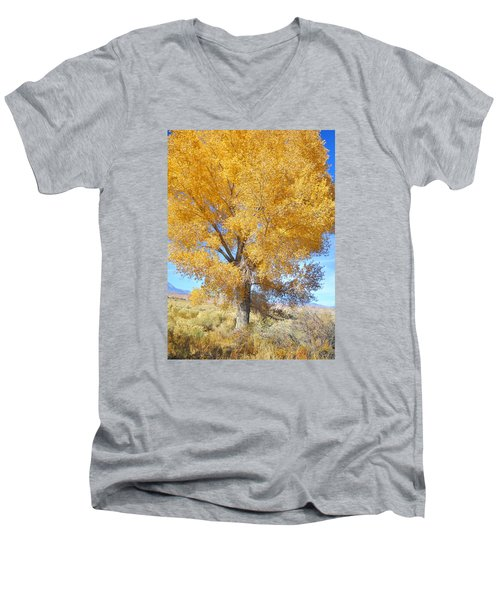 Men's V-Neck T-Shirt featuring the photograph Orange Serenade by Marilyn Diaz