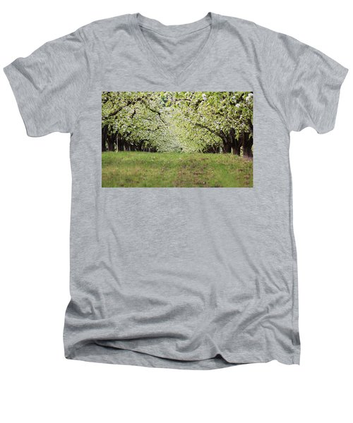Men's V-Neck T-Shirt featuring the photograph Orchard by Patricia Babbitt