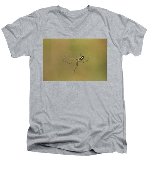 Men's V-Neck T-Shirt featuring the photograph Orchard Spider by Greg Allore