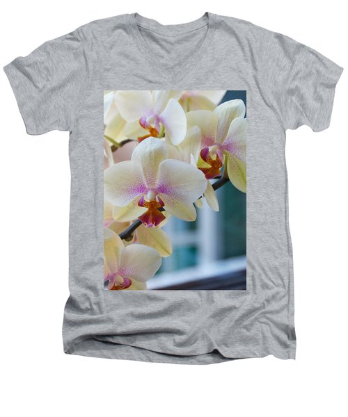 Orchids In The Morning Light Men's V-Neck T-Shirt by Debbie Karnes