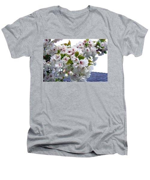 Oregon Cherry Blossoms Men's V-Neck T-Shirt by Will Borden