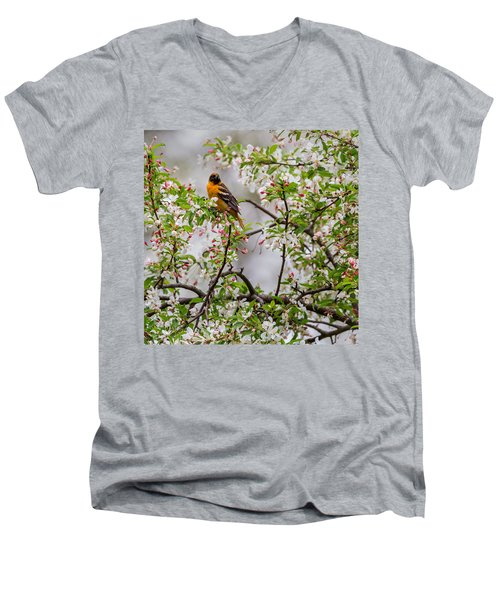 Oriole In Crabapple Tree Square Men's V-Neck T-Shirt by Bill Wakeley