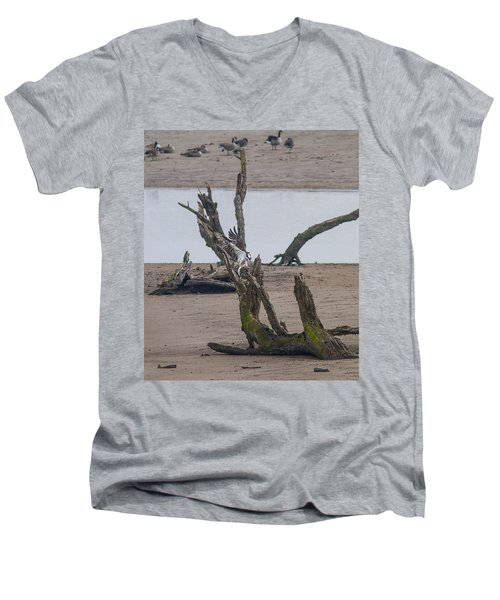 Men's V-Neck T-Shirt featuring the photograph Ospray With Fish by Brian Williamson