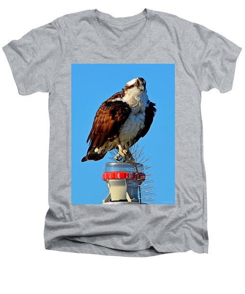 Men's V-Neck T-Shirt featuring the photograph Osprey Close-up On Water Navigation Aid by Jeff at JSJ Photography