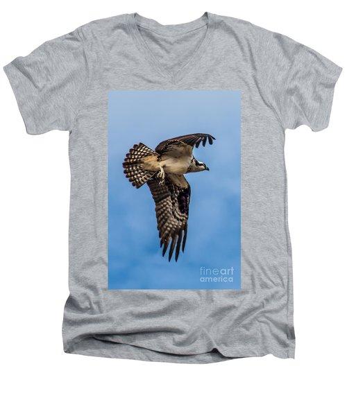 Osprey Flying Away Men's V-Neck T-Shirt