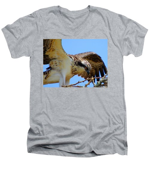 Men's V-Neck T-Shirt featuring the photograph Osprey Youth by Dianne Cowen