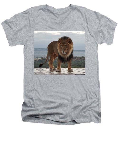 Out Of Africa Lion 3 Men's V-Neck T-Shirt
