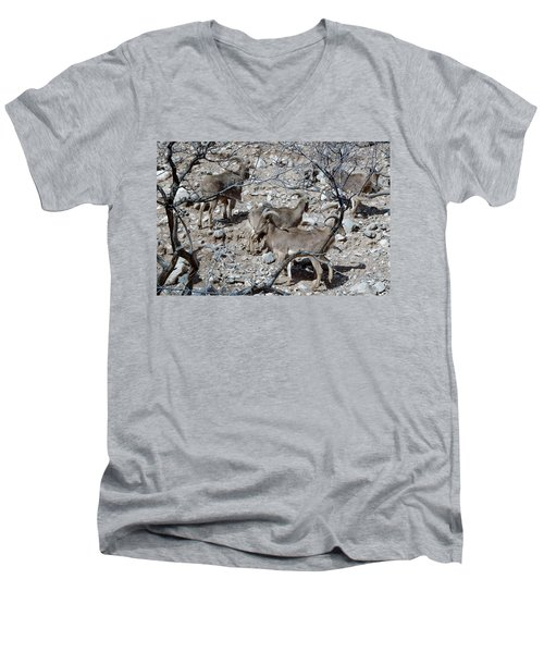 Out Of Africa  Mountain Goats Men's V-Neck T-Shirt