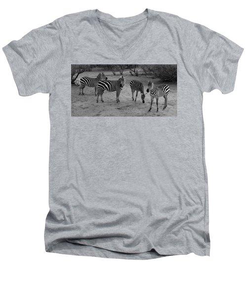 Out Of Africa  Zebras Men's V-Neck T-Shirt