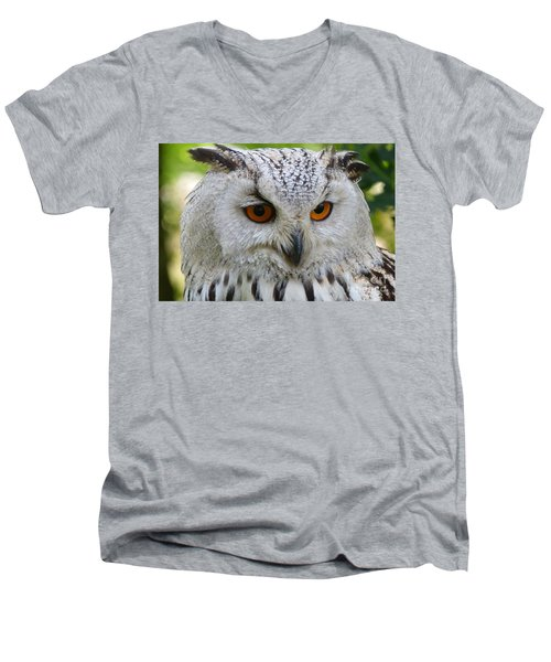 Men's V-Neck T-Shirt featuring the photograph Owl Bird Animal Eagle Owl by Paul Fearn