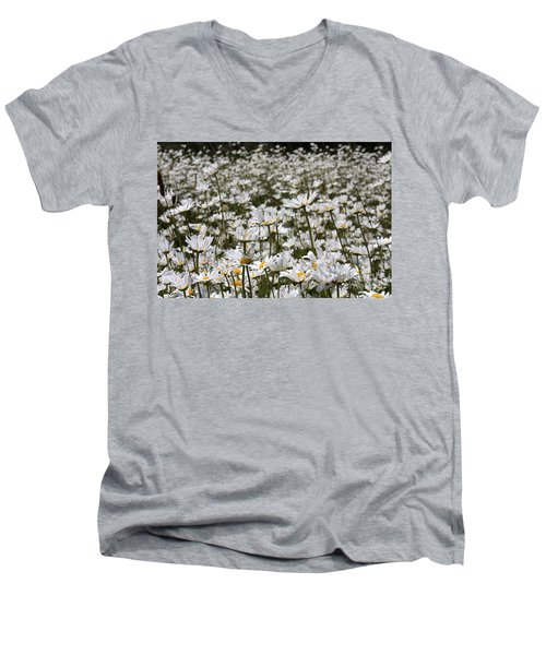 Ox Eye Daisies Men's V-Neck T-Shirt