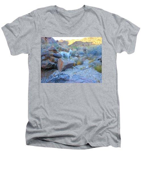 Paco Men's V-Neck T-Shirt