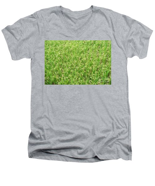 Men's V-Neck T-Shirt featuring the photograph Paddy Field by Yew Kwang