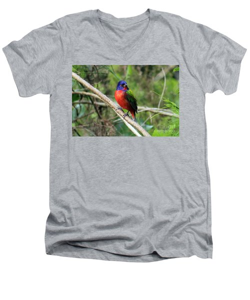 Men's V-Neck T-Shirt featuring the photograph Painted Bunting Photo by Meg Rousher