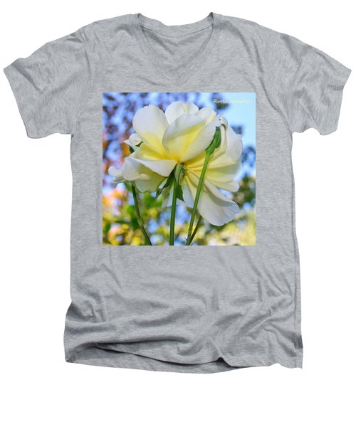 Pale Yellow Rose And Blue Sky Men's V-Neck T-Shirt
