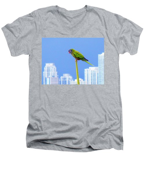 Parrot Men's V-Neck T-Shirt by J Anthony