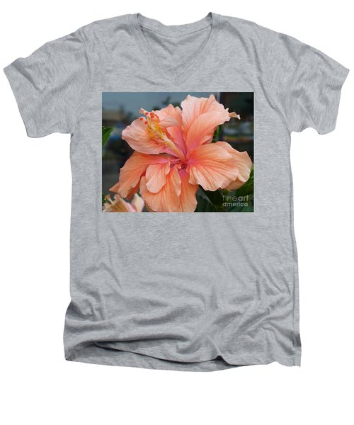 Men's V-Neck T-Shirt featuring the photograph Peach And Cream by Lingfai Leung