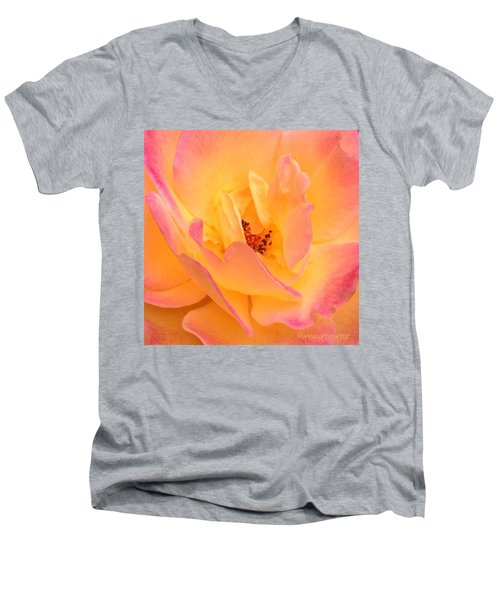 Peach Parfait  Men's V-Neck T-Shirt
