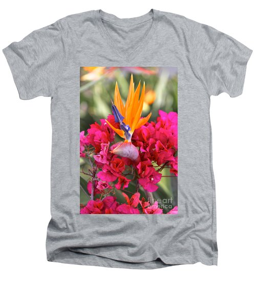 Peeking Through  Men's V-Neck T-Shirt by Suzanne Oesterling