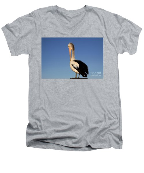 Pelican Alone Men's V-Neck T-Shirt