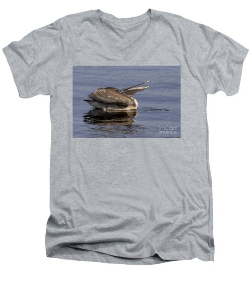 Pelican Fountain  Men's V-Neck T-Shirt