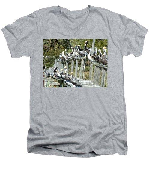 Pelican Party Men's V-Neck T-Shirt