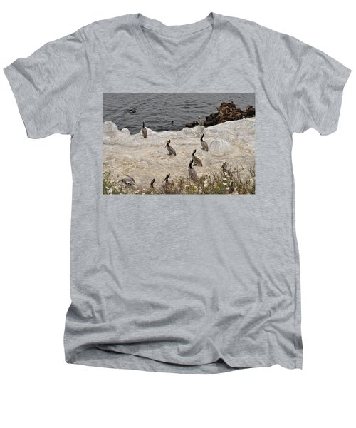 Pelicans Seals N Daisies  Men's V-Neck T-Shirt