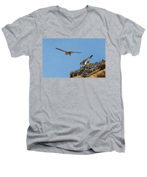Peregrine Falcons - 6  Men's V-Neck T-Shirt