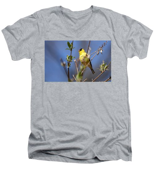 Perfect Shade Of Yellow Men's V-Neck T-Shirt
