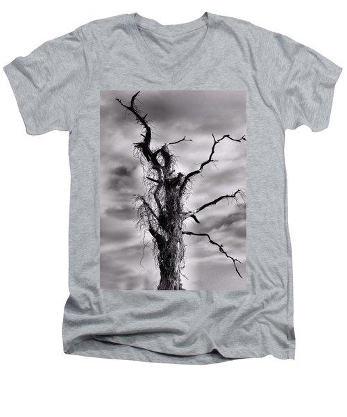 Petrified Tree Men's V-Neck T-Shirt