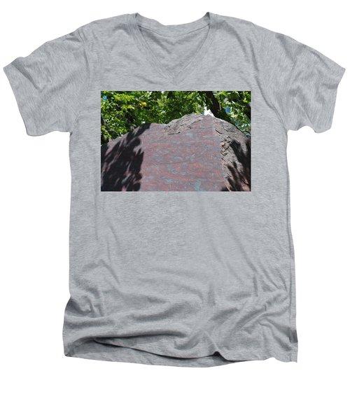 Petrified Wood On Display Men's V-Neck T-Shirt