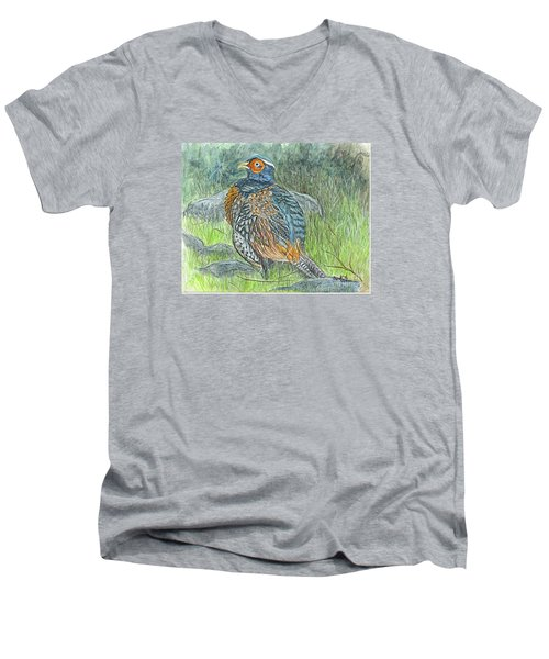 Men's V-Neck T-Shirt featuring the drawing Pheasant Common Male by Carol Wisniewski