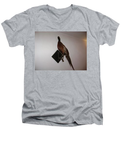 Pheasant Men's V-Neck T-Shirt