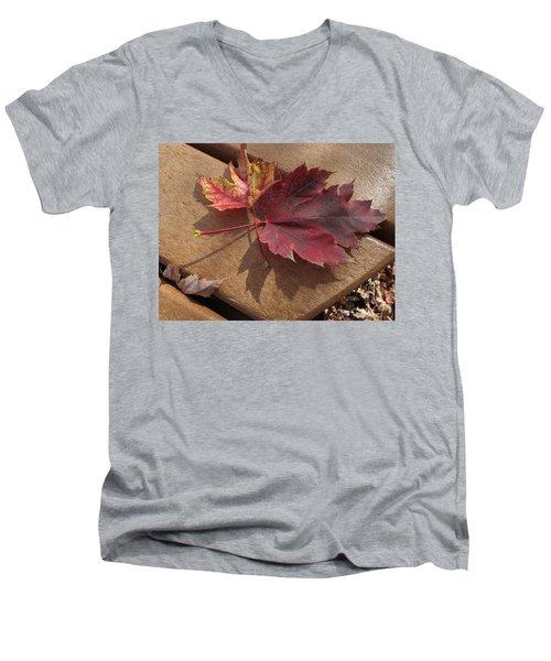Picnic For Two Men's V-Neck T-Shirt