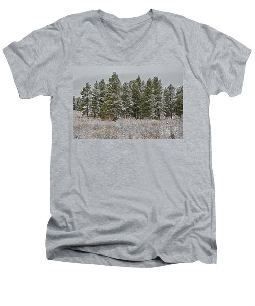 Pine Flurries Men's V-Neck T-Shirt