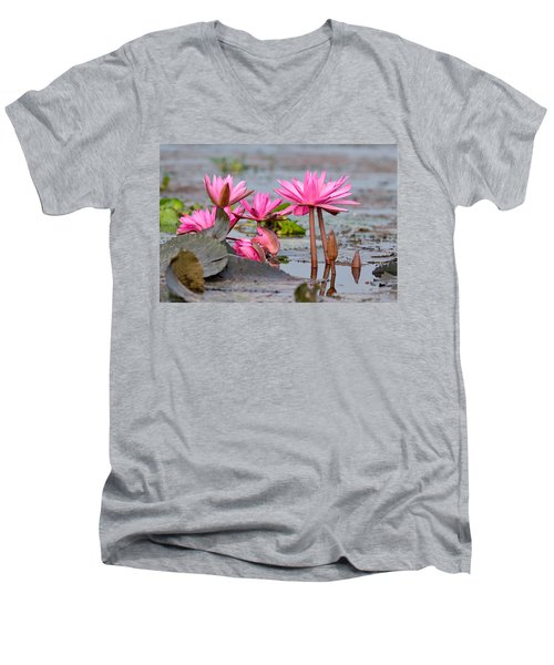 Pink Lotuses Men's V-Neck T-Shirt by Fotosas Photography