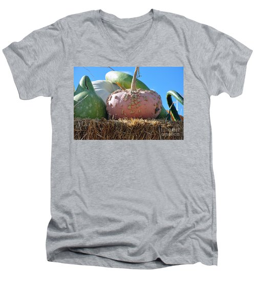 Men's V-Neck T-Shirt featuring the photograph Pink Pumpkin And Friends by Minnie Lippiatt