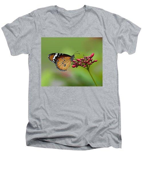 Plain Tiger Or African Monarch Butterfly Dthn0008 Men's V-Neck T-Shirt